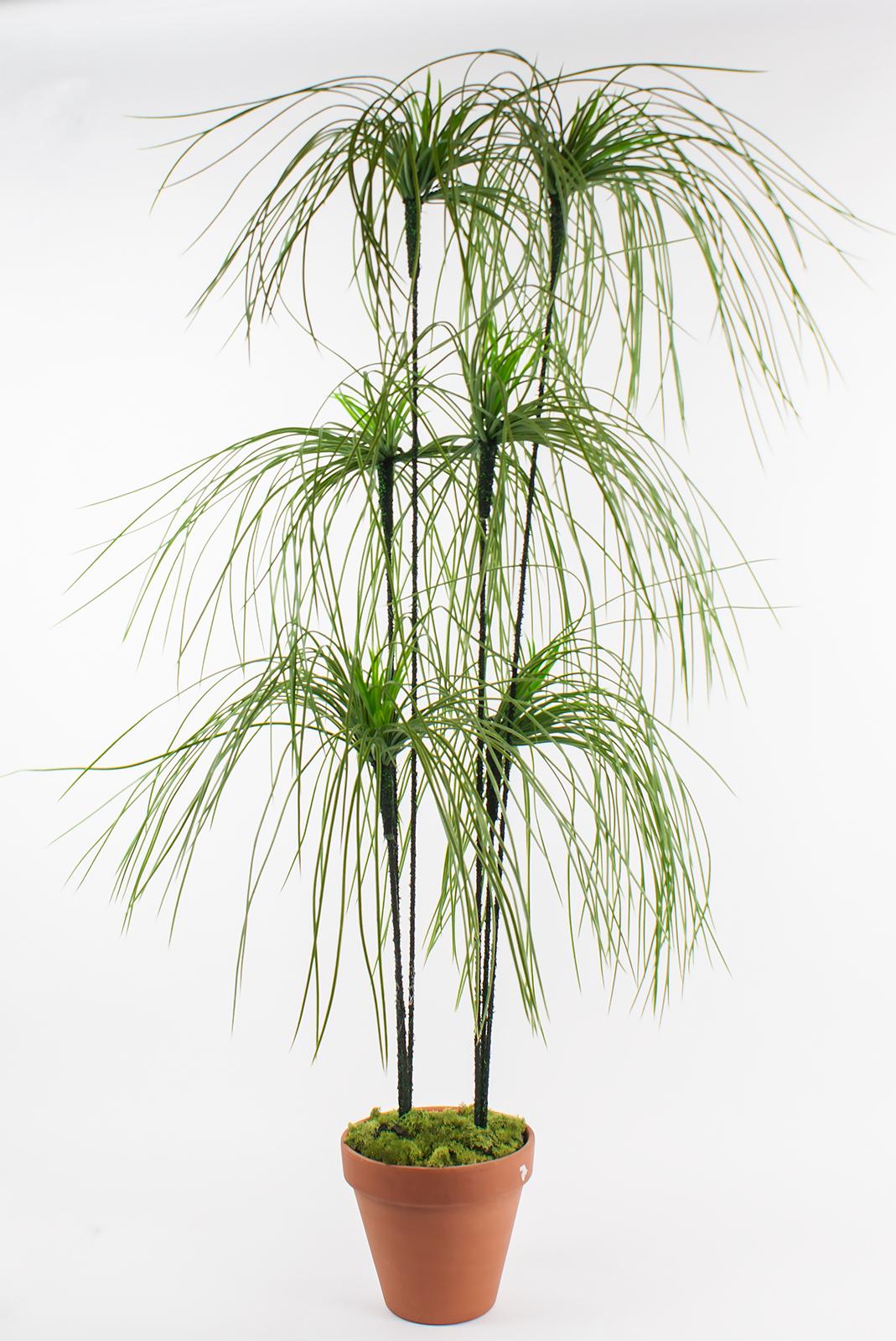 papyrus kunstpflanze xxl gras dekopflanze mit blumentopf 120cm hoch keramik neu ebay. Black Bedroom Furniture Sets. Home Design Ideas