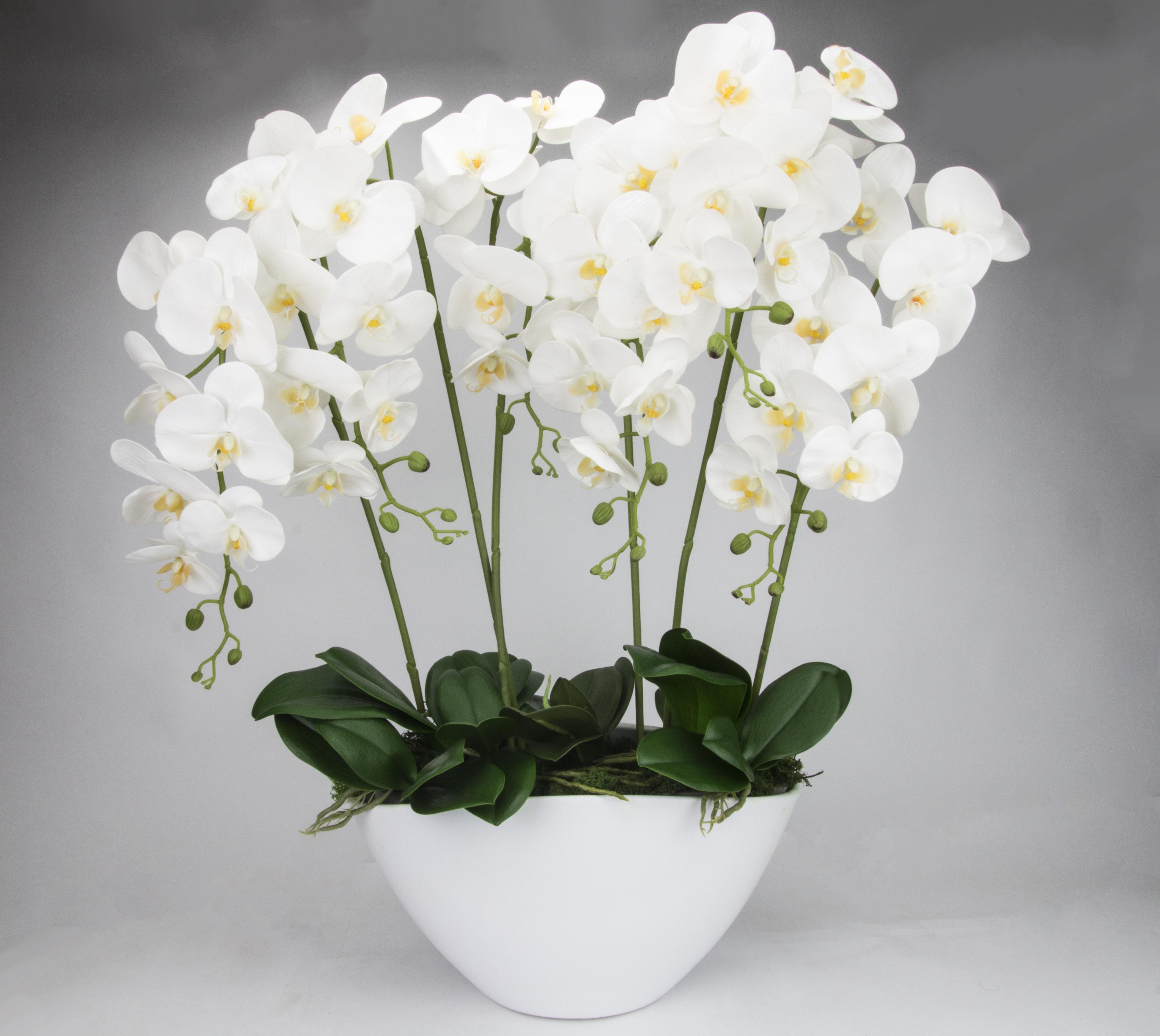 k nstliche orchideen xxl gro kunstblumen bertopf. Black Bedroom Furniture Sets. Home Design Ideas